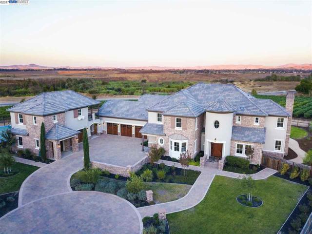 1012 Shotwell Ct, Pleasanton, CA 94566 (#40798769) :: Armario Venema Homes Real Estate Team