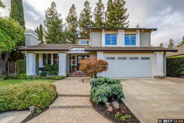 4031 Schween Ct, Pleasanton, CA 94566 (#40801265) :: Max Devries
