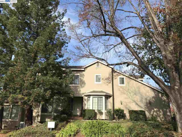 767 Praderia Circle, Fremont, CA 94539 (#40805540) :: The Rick Geha Team