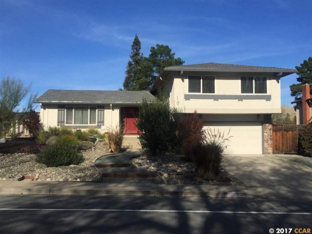 206 Mountaire Cir, Clayton, CA 94517 (#40805561) :: The Lucas Group