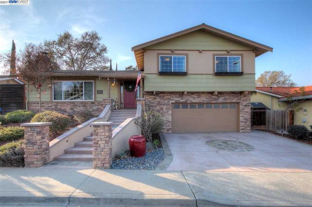387 Ewing Drive, Pleasanton, CA 94566 (#40805711) :: J. Rockcliff Realtors