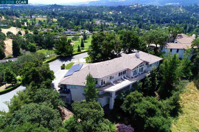 231 Michelle Lane, Alamo, CA 94507 (#40806976) :: Realty World Property Network