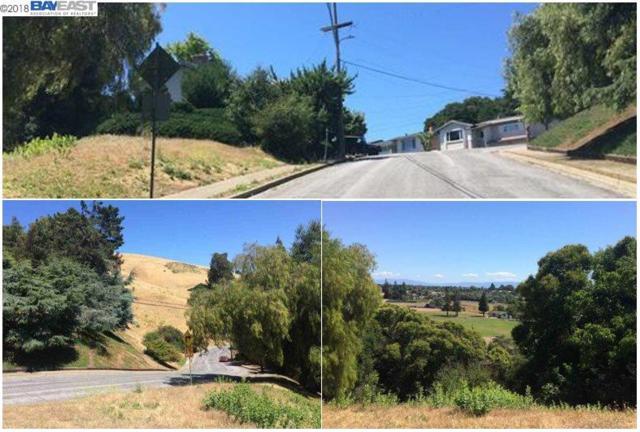 32045 Bernice Way, Hayward, CA 94544 (#40807118) :: Armario Venema Homes Real Estate Team