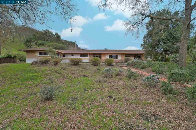 1210 Russelmann Park Rd, Clayton, CA 94517 (#40807410) :: Estates by Wendy Team