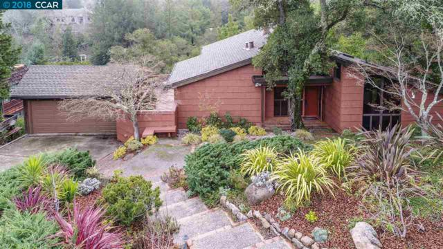 4176 Coralee Ln, Lafayette, CA 94549 (#40807447) :: Realty World Property Network