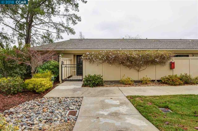 1101 Leisure Lane #3, Walnut Creek, CA 94595 (#40807460) :: J. Rockcliff Realtors