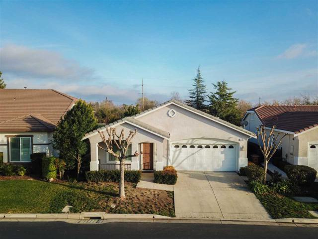 1185 Bacchini Ln, Brentwood, CA 94513 (#40807810) :: Estates by Wendy Team