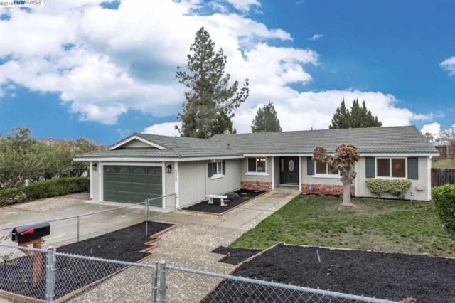 3337 Mountaire Dr, Antioch, CA 94509 (#40807931) :: Estates by Wendy Team
