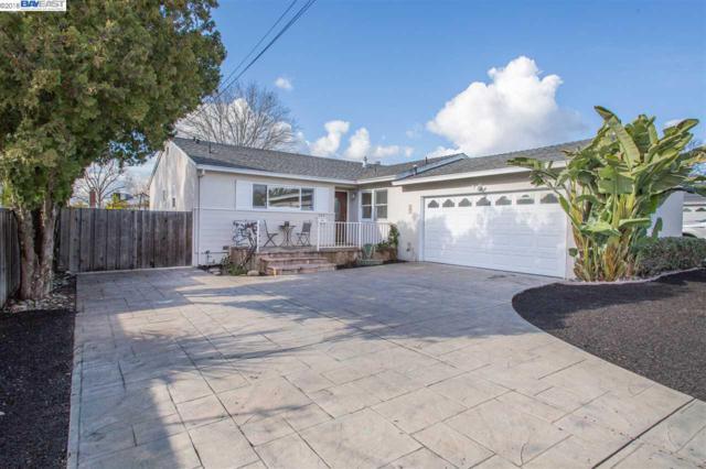 243 Martin Ave, Livermore, CA 94551 (#40807966) :: Armario Venema Homes Real Estate Team