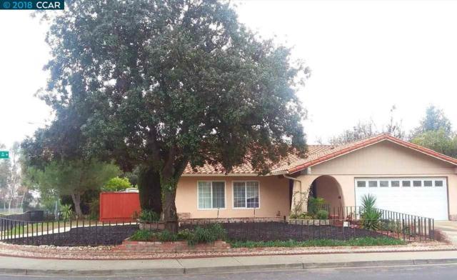 206 Turnstone Dr, Livermore, CA 94551 (#40808011) :: Armario Venema Homes Real Estate Team