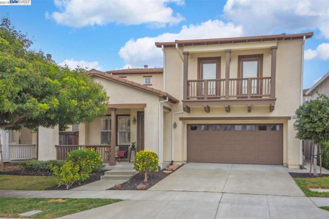 1012 Shorebird Dr, Hercules, CA 94547 (#40808034) :: Armario Venema Homes Real Estate Team