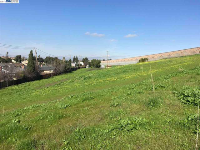 E Warren Ave, Fremont, CA 94538 (#40808216) :: Armario Venema Homes Real Estate Team