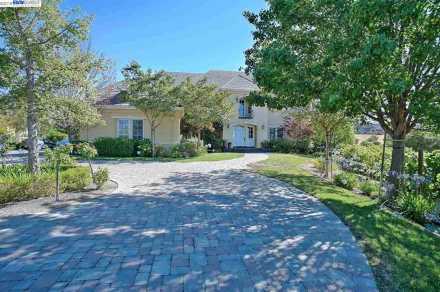 1569 Via Di Salerno, Pleasanton, CA 94566 (#40808539) :: Armario Venema Homes Real Estate Team