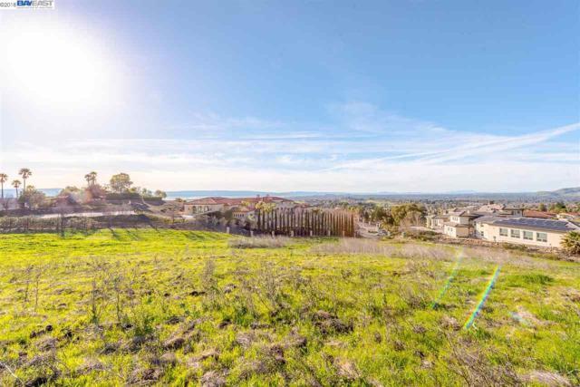 1160 Highland Ter, Fremont, CA 94539 (#40810993) :: Armario Venema Homes Real Estate Team