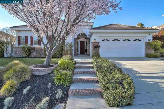 1009 Rolling Woods Way, Concord, CA 94521 (#40811629) :: Team Temby Properties