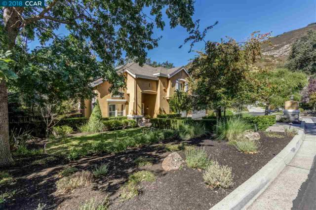 61 Blackhills Pl, Danville, CA 94506 (#40811785) :: Armario Venema Homes Real Estate Team