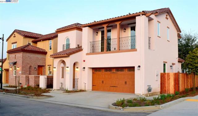 101 Barias Place, Pleasanton, CA 94566 (#40812480) :: Armario Venema Homes Real Estate Team