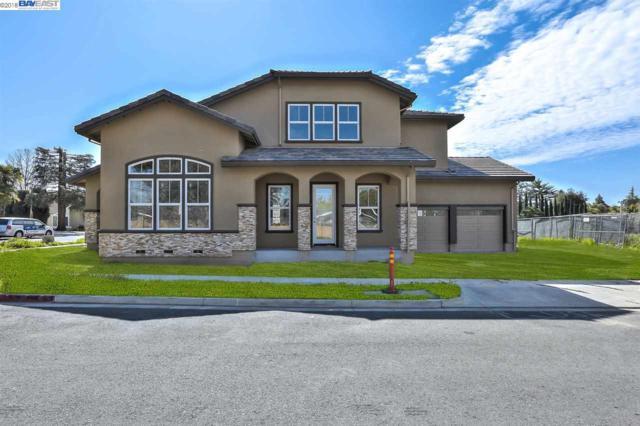 1622 Mento Ter, Fremont, CA 94539 (#40813178) :: Armario Venema Homes Real Estate Team