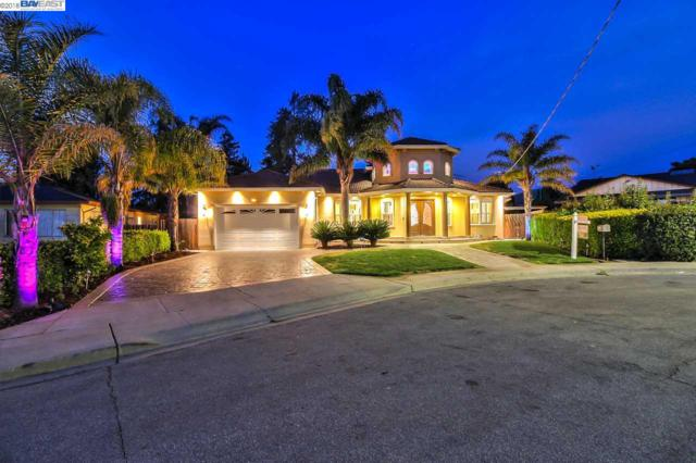 1235 Austin St, Fremont, CA 94539 (#40813585) :: Armario Venema Homes Real Estate Team