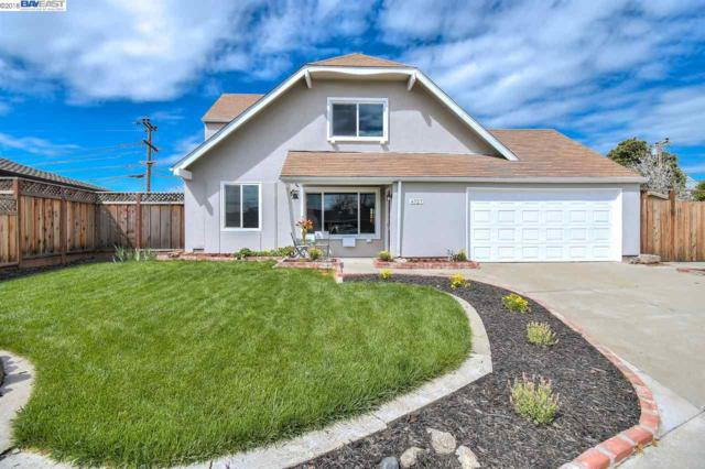 4727 Wadsworth Ct, Fremont, CA 94538 (#40813606) :: Armario Venema Homes Real Estate Team