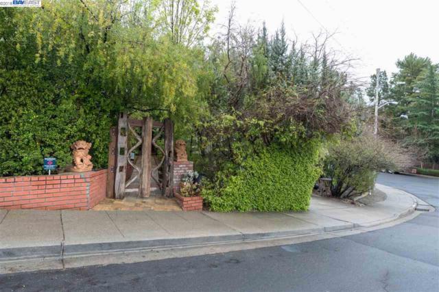 541 Saint George Ct, Livermore, CA 94551 (#40813692) :: Armario Venema Homes Real Estate Team