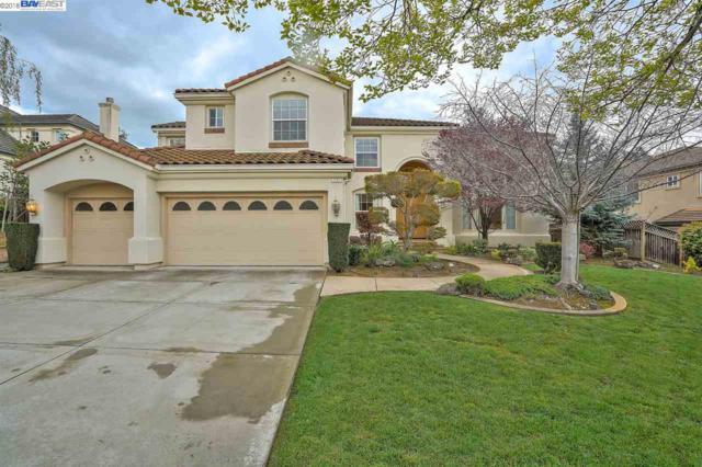 731 Bodega Ct, Fremont, CA 94539 (#40813779) :: Armario Venema Homes Real Estate Team