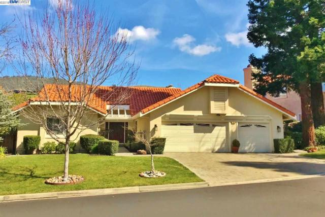 728 Liquidamber Pl, Danville, CA 94506 (#40813781) :: Armario Venema Homes Real Estate Team
