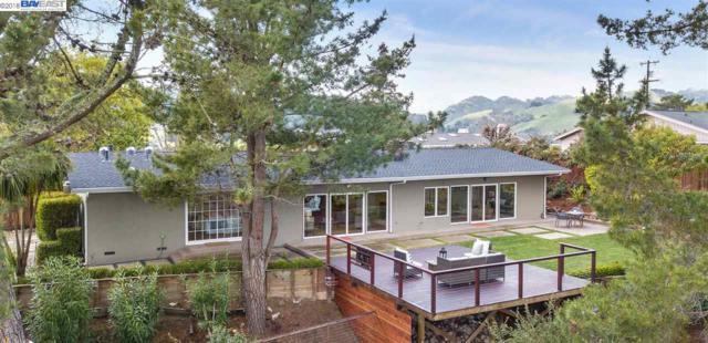 116 Scenic Drive, Orinda, CA 94563 (#40813800) :: J. Rockcliff Realtors