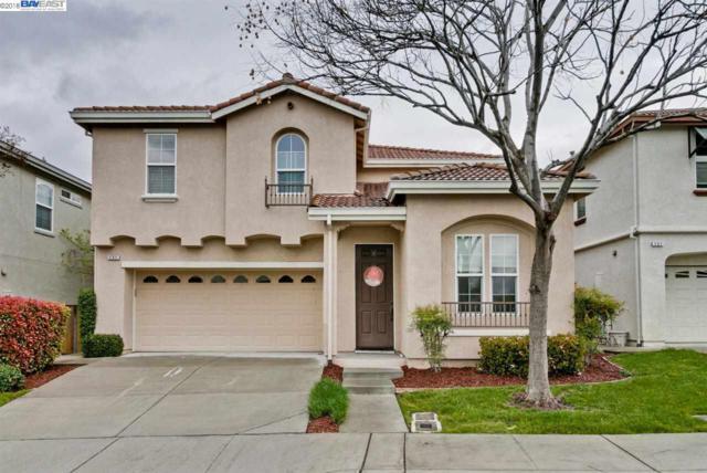 131 Jasmine Ct, Union City, CA 94587 (#40814019) :: Armario Venema Homes Real Estate Team