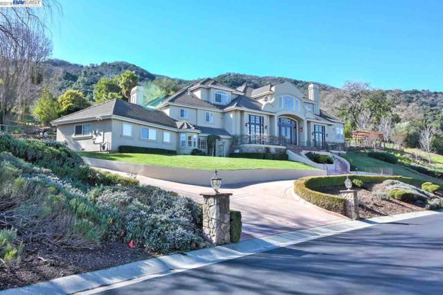 1901 Buckeye Ct, Pleasanton, CA 94588 (#40814037) :: Armario Venema Homes Real Estate Team