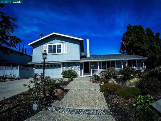 110 Mt. Shasta Court, Clayton, CA 94517 (#40814102) :: J. Rockcliff Realtors