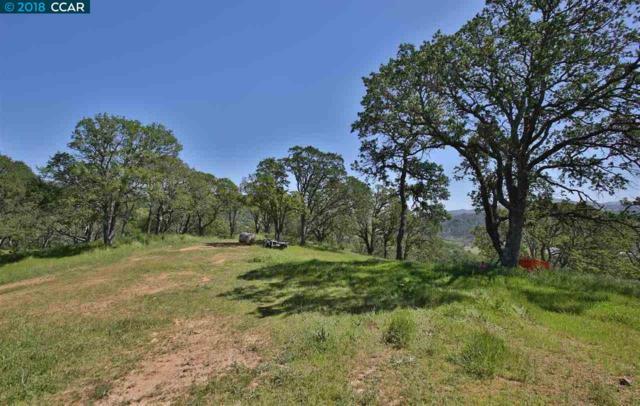 11200 Marsh Creek Rd, Clayton, CA 94517 (#40814320) :: Estates by Wendy Team