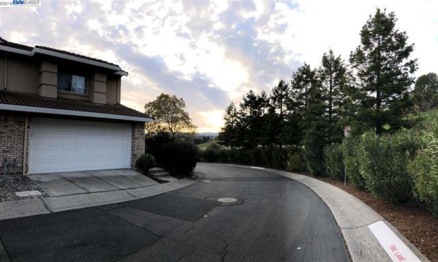 4376 Conejo Dr, Danville, CA 94506 (#40814403) :: Armario Venema Homes Real Estate Team
