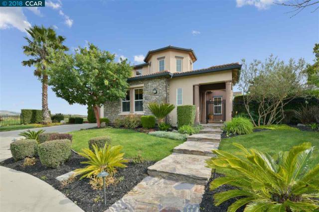 426 Rioja Ct, Danville, CA 94506 (#40814456) :: Armario Venema Homes Real Estate Team