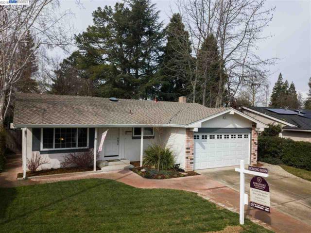 2418 Via Espada, Pleasanton, CA 94566 (#40814519) :: Armario Venema Homes Real Estate Team