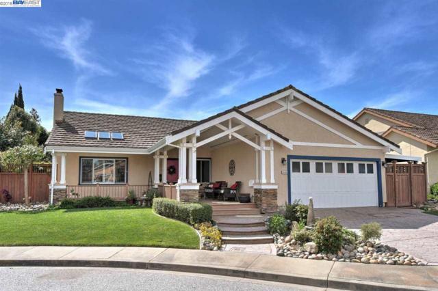 35255 Wycombe Pl, Newark, CA 94560 (#40814539) :: Armario Venema Homes Real Estate Team