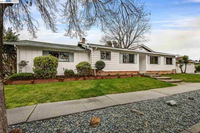 42741 Mayfair Park Ave, Fremont, CA 94538 (#40814575) :: Armario Venema Homes Real Estate Team