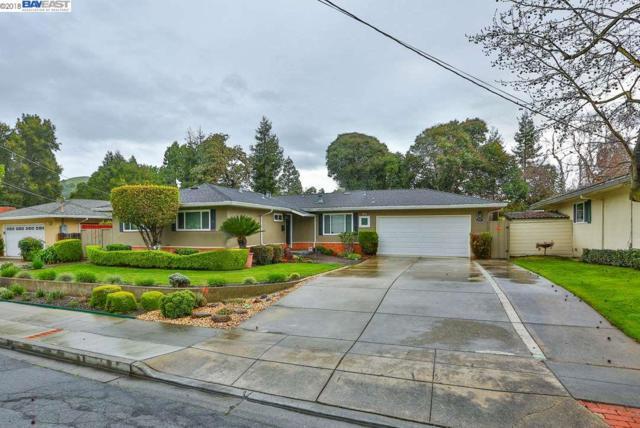 260 Hillview Dr, Fremont, CA 94536 (#40814709) :: Armario Venema Homes Real Estate Team