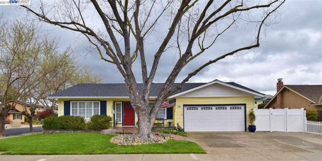 2785 Turnstone Dr, Pleasanton, CA 94566 (#40814826) :: Realty World Property Network