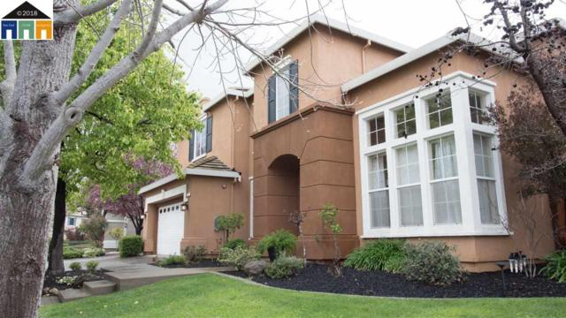 215 Obsidian Way, Livermore, CA 94550 (#40814984) :: Realty World Property Network