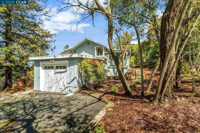3368 Johnson Rd, Lafayette, CA 94549 (#40815041) :: Realty World Property Network