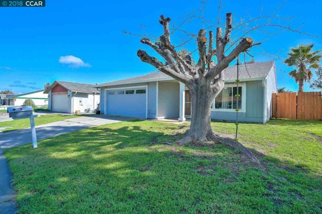 306 Baltic Sea Ct, Pittsburg, CA 94565 (#40815085) :: Armario Venema Homes Real Estate Team