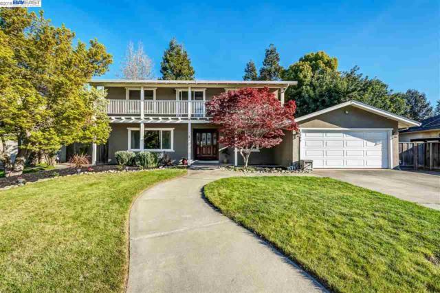 4834 Pipit Ct., Pleasanton, CA 94566 (#40815554) :: Armario Venema Homes Real Estate Team