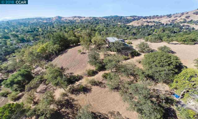 20 Whitfield Court, Pleasant Hill, CA 94523 (#40816012) :: Estates by Wendy Team