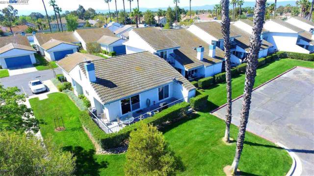 5645 Schooner Loop, Discovery Bay, CA 94505 (#40816042) :: Armario Venema Homes Real Estate Team