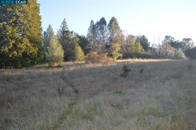 Lot #8 Raney Road, Columbia, CA 95310 (#40816651) :: Armario Venema Homes Real Estate Team