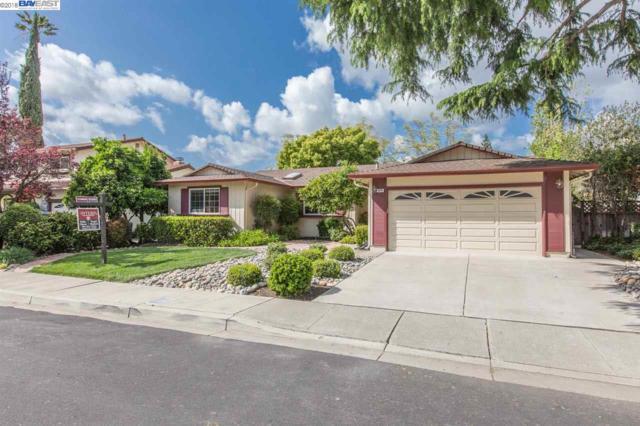 1874 Brooktree Way, Pleasanton, CA 94566 (#40817401) :: Armario Venema Homes Real Estate Team