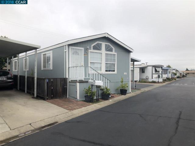 75 Oneida St, Oakley, CA 94561 (#40817857) :: RE/MAX TRIBUTE