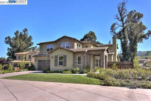 2663 Turturici Way, San Jose, CA 95133 (#40818179) :: Armario Venema Homes Real Estate Team