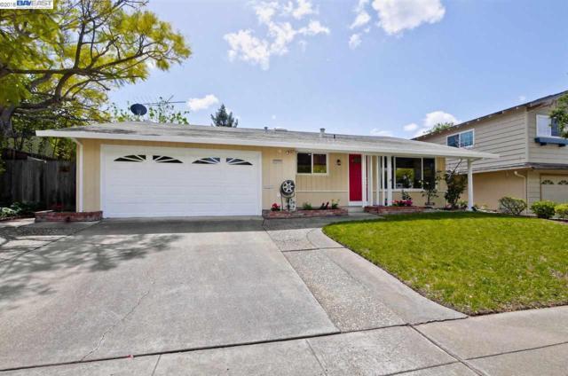 2012 Mento Dr, Fremont, CA 94539 (#40818184) :: Armario Venema Homes Real Estate Team